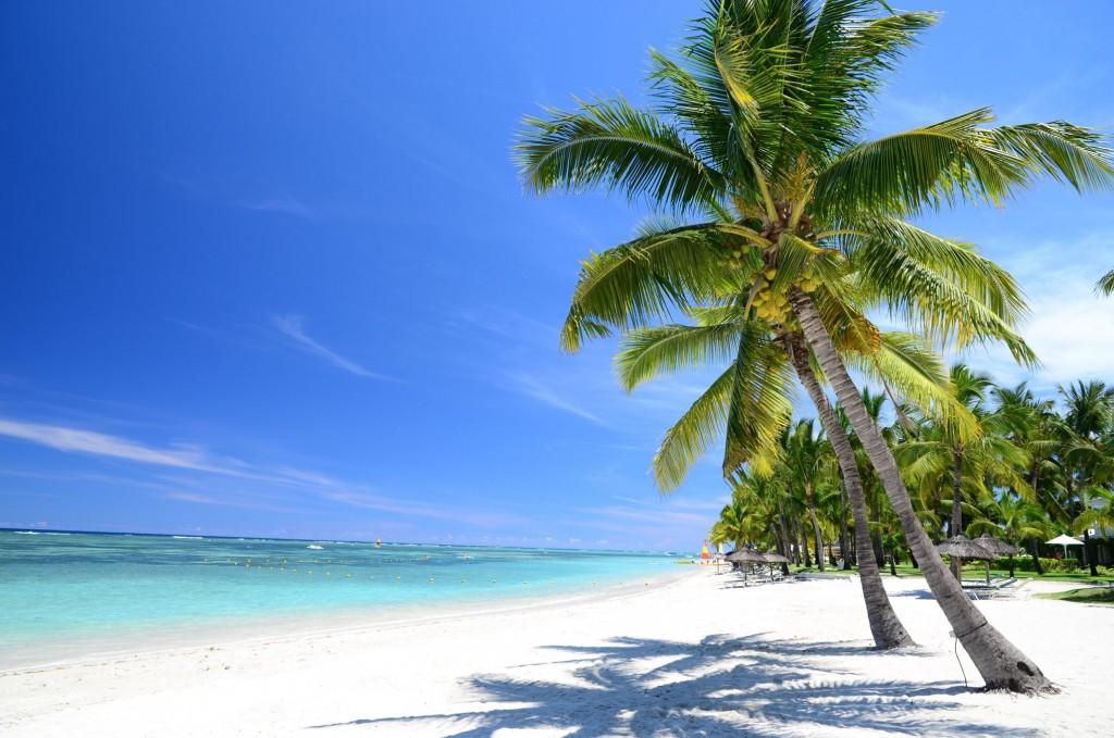 Les belles plages de djerba un paradis sur terre voyage for Fond d ecran pour pc 17 pouces